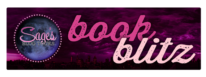 bookblitz banner (3).png